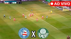 Bahia x Palmeiras ao vivo Foto/Divulgação