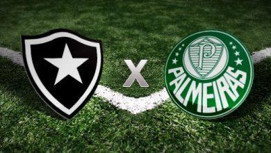 Palmeiras x Botafogo ao vivo - Foto/Divulgação
