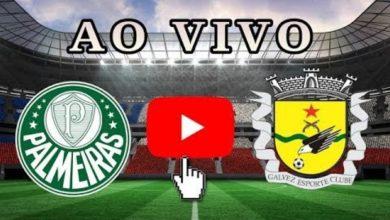 Palmeiras x Galvez ao vivo - Foto/Divulgação