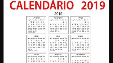 Calendário 2019 e seus feriados - Foto/Divulgação