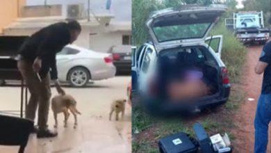 Não é verdade que homem que deu facada em cão foi morto - Foto