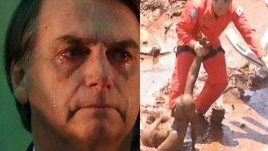 Bolsonaro toma atitude corajosa diante de tragédia de Brumadinho - Foto/Montagem