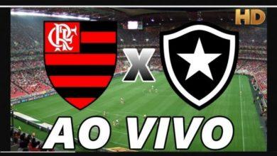 Botafogo x Flamengo ao vivo - Foto/Divulgação