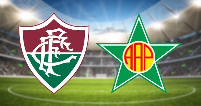 Fluminense x Portuguesa ao vivo - Foto/Divulgação