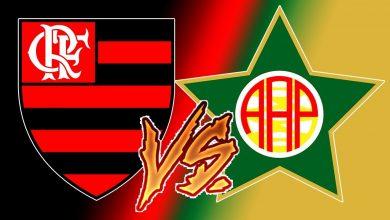 Flamengo x Portuguesa ao vivo - Foto/Divulgação