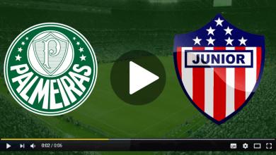 Palmeiras x Junior de Barranquilla ao vivo - Foto/Divulgação