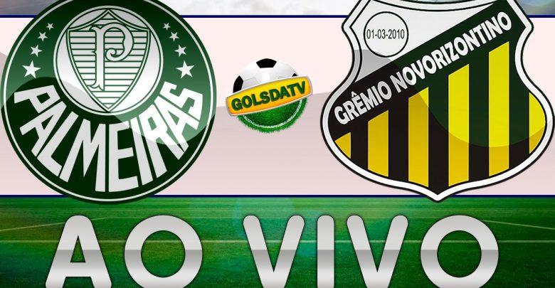Palmeiras x Novorizontino ao vivo - Foto/Divulgação