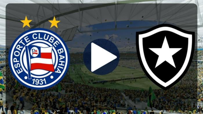 Botafogo x Bahia ao vivo - Foto/Divulgação