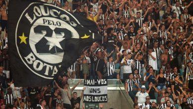 Botafogo x Sol de America ao vivo - Foto/Divulgação