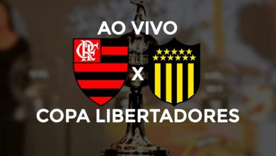 Flamengo x Peñarol ao vivo - Foto/Divulgação